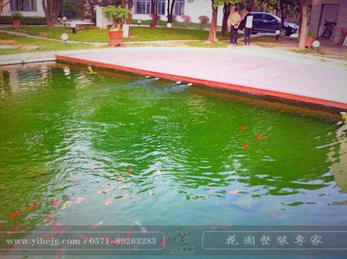 杭州壮大科技锦鲤池改造|锦鲤池过滤系统|水质净化处理