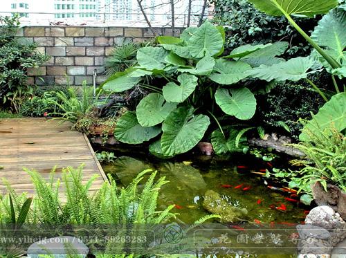 露台花园|露台假山水溪景观|露台木平台景观设计|私家小露台景观绿化